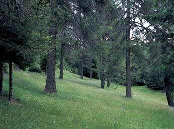 Trudner Horn Nature Park