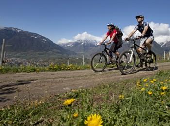 Un giro in bici