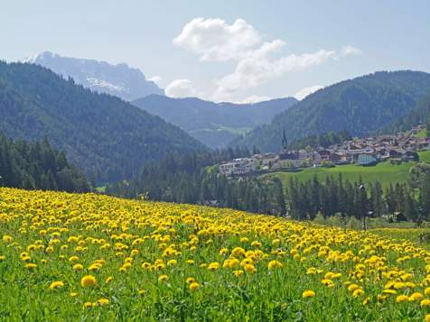 View of St. Martin in Thurn