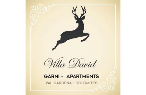 Villa David Logo
