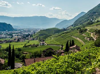 Vinum Hotels Alto Adige