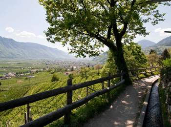 """Waalweg"" path in the environs of Meran"