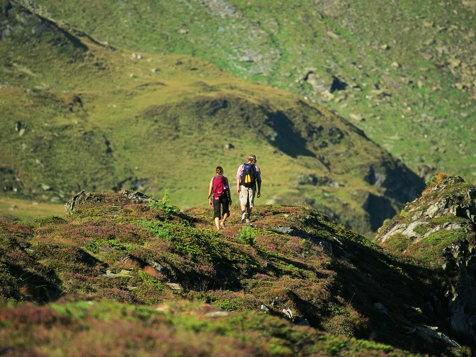 Wandern in Mayrhofen