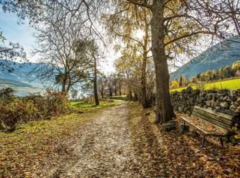 Wanderweg Richtung Vahrner See