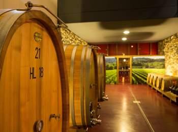 Wine cellar in Marling
