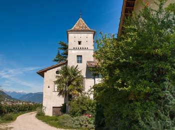 Winery in Eppan on the Wine Route