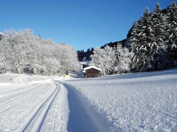 Winter and cross ski country in the the Weinter