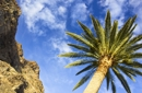 Zwischen Berg und Palmen